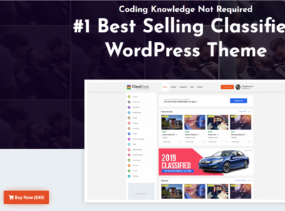 Best Classified WordPress Theme in usa