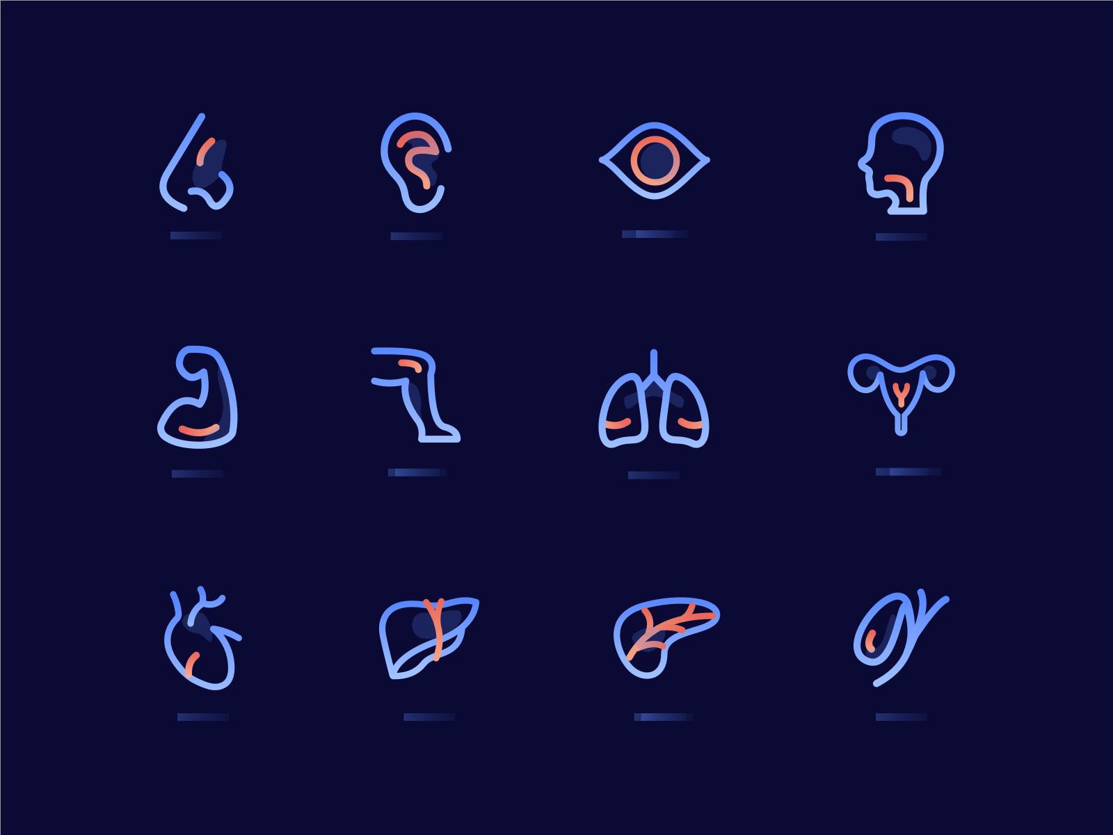人体器官图标 ico 图标 设计 应用 ui