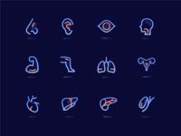 人体器官图标