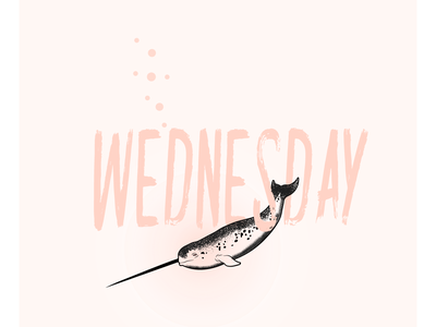 Wednesday Whal pink whale narwhal wednesday