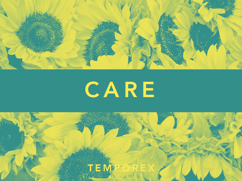 Care by TEMPOREX album artwork sunflower flower music challenge jrdickie typehue temporex duotone record care