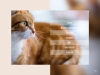 DailyUI #006 User Profile.2