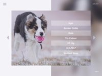 DailyUI #006 User Profile.3
