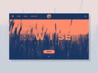Duotone Home Page (Desktop)