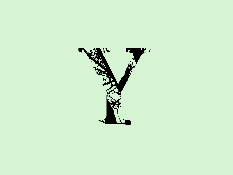 Y winter experiment 36 type lettering challenge text nature tree y letter font 36 days of type lettering 36 days 36 days of type typography vector branding design jrdickie