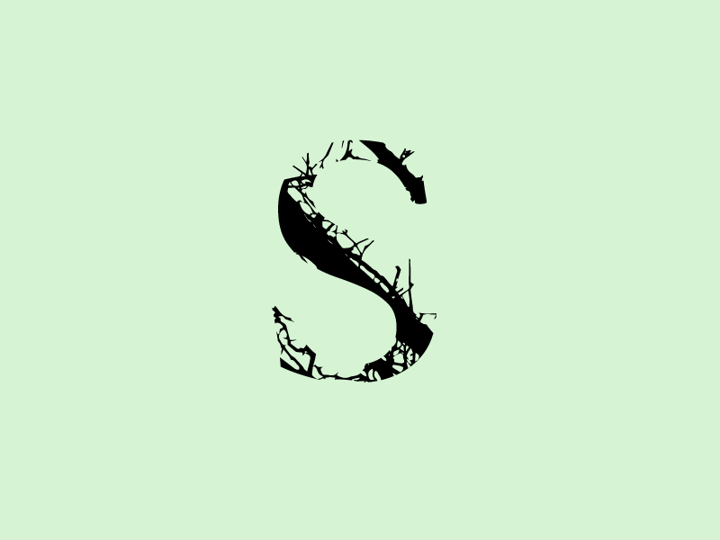 S 36days 36 days of type tree text type art experiment letters lettering letter s 36 36daysoftype font design type design font type typography vector design jrdickie