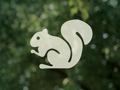 Squirrel animal icon squirrel