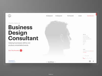 Business Design Consultant - Website Design