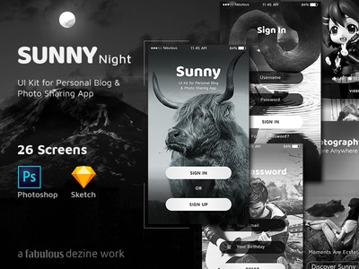 Sunny Night - UI KIT for Personal Blog & Photo Sharing App photoshop sketch vector ui kit business portfolio personal blog blogging gallery photo editing photo sharing