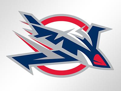 Winnipeg Jets branding ice hockey jets winnipeg sports branding sports logos hockey sports nhl