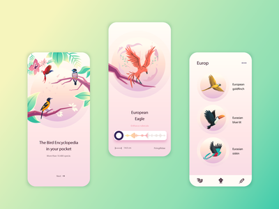 Bird Wiki App Concept vector ui design logo app design web website illustration ux ui