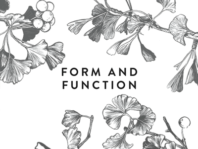 Form and Function book trees illustration drawing ginkgo