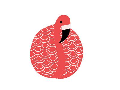 Flamingo book bird illustration animal nature pattern bird flamingo