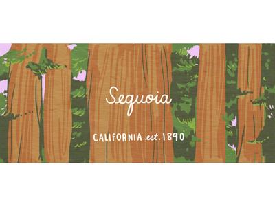 Sequoia california trees redwoods nature illustration nature outdoors nps national park sequoia