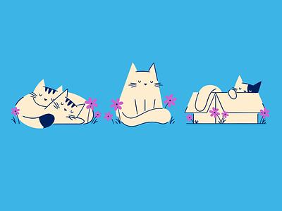Cat Naps flowers sleeping nap cat line art flat illustration