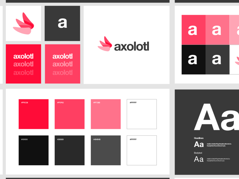 Guidelines c. gradient xd white app web dribbble adobe minimal ux design ui