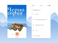 UI Design for OpenMonte Mobile App