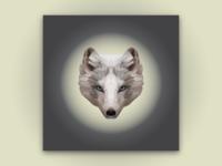 The Lunar Fox