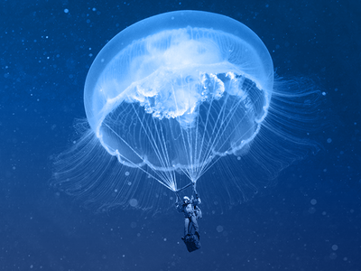 Just for fun-1 jellyfish for fun image manipulation montage