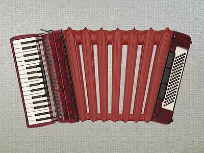 Just For Fun-2 image editing radiator accordion for fun image manipulation montage