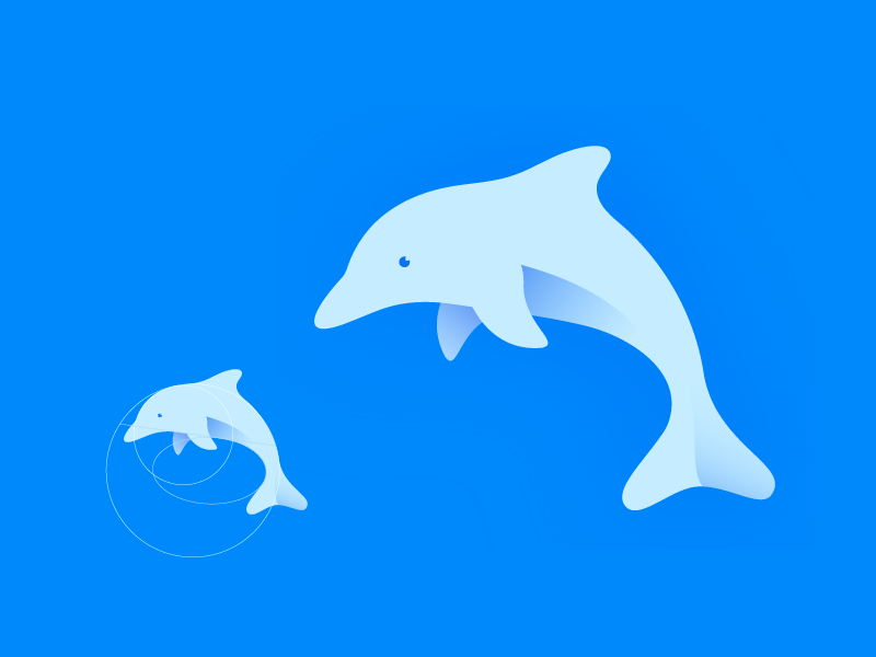 Dribbble Dolphin Grid behance color adliqi adobeillustrator gradient design logo
