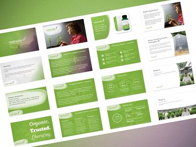 Investor Pitch Deck presentation deck brand cannabis