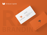 endure capital Re-branding