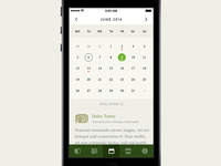 Mayan Astrology App Calendar Screen