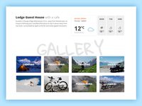 Schanagzer Website Design