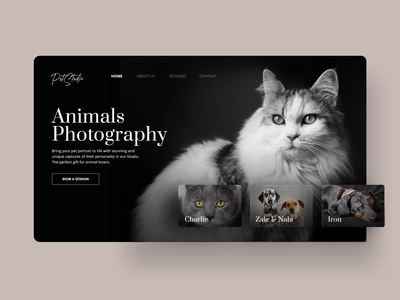 Animals Photography Website cats dogs user experience user interface pets photography animals user inteface website webdesign user uidesign userexperience graphicdesign uxdesign uiux design ui ux