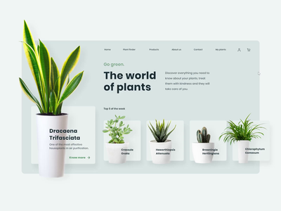 20200430-plants-website-dribbble.mp4 (1).mp4