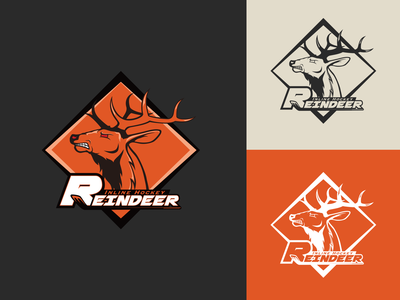 Reindeer Inline Hockey Team