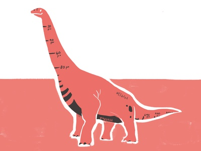 Specosaurus Designo flat just for fun brontosaurus dinosaur illustration digital illustration
