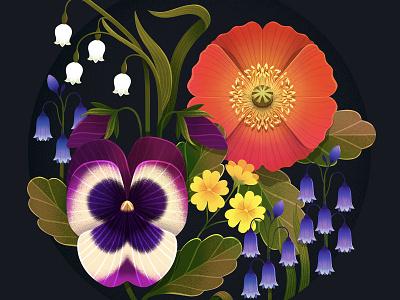 Flower Studies australian illustrator flowers illustration flower illustration flowers flower botanical illustration botanical art procreate illustration