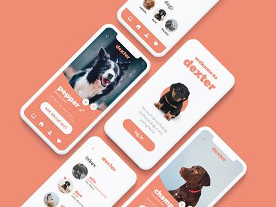 Dexter App for Dog Shelters app design puppy dogs app design uxui iphone app dog shelter