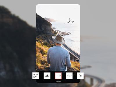 Emphasis app retouching photo birds visual ui ux concept app ios