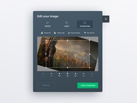 Image Editor Mini popup interface crop photo editor editor image editing design uiux figma webdesign