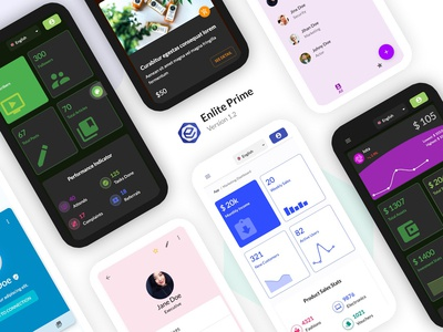 Enlite Prime - Responsive Dashboard Website
