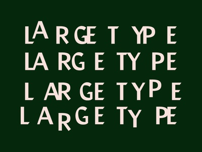LARGE TYPE - Type Experiment