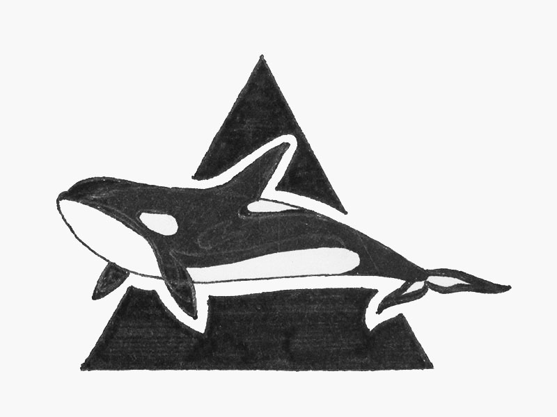 Orca: Hand drawing