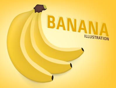 Banana Bunch Vector Illustration illustration protein vitamin fruity food illustration food and drink banana leaves fruit food banana