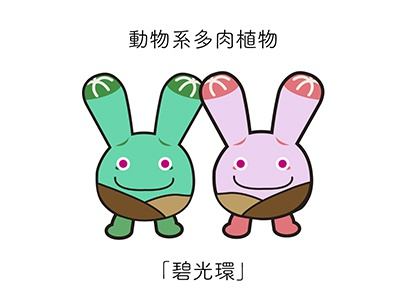 PlumpPlanet Story Character Design children animation comics cartoon sticker plant succulent funny warm icon character