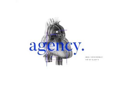 Blimp.Agency web ui illustration typography agency package design creative design ui ux designer creative designer brand branding creative design
