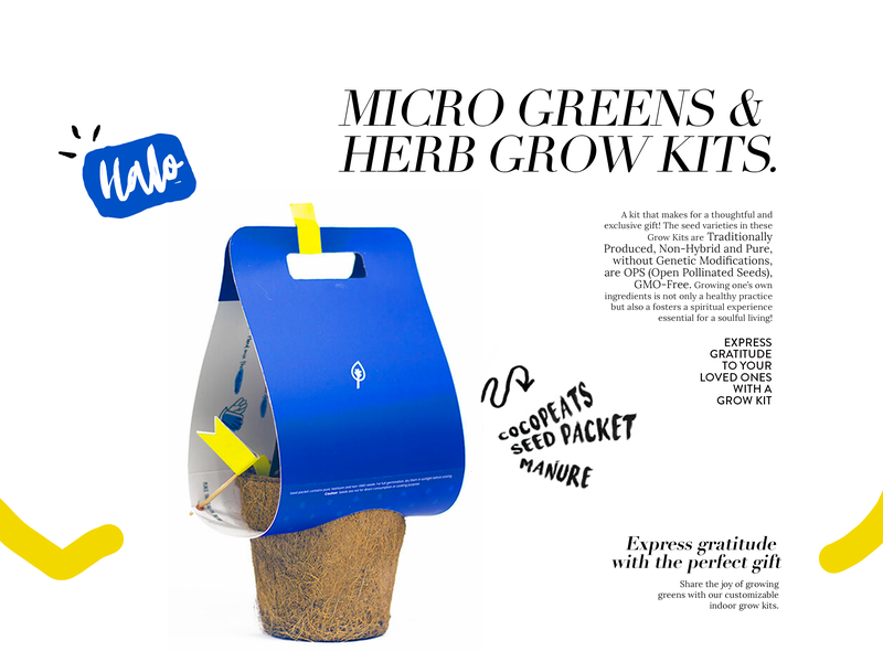 Grow Kit package typography illustration brand eccomerce package design creative design designer ui ux creative designer branding creative design