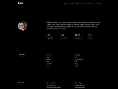 One Page Developer Template resume simple clean modern bootstrap html5 template web template developer onepage