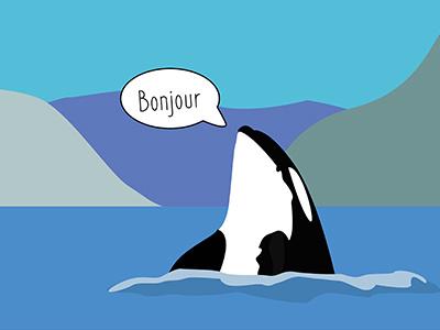 Bonjour Orca digital art art orcas whales graphic design minimalist art