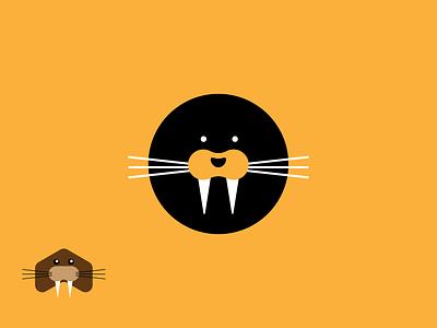Circle Sea Lions sea lions style guide  logo identity branding  branding brand animal logo