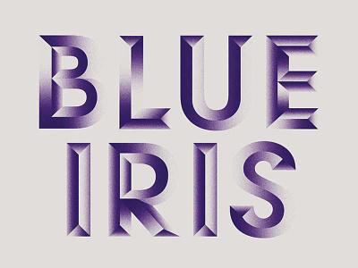 Blue Iris grain gradient 3d typography