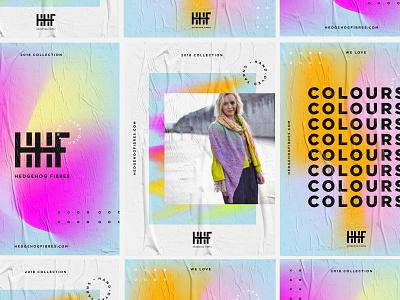 Hedgehog Fibres – Branding design modern gradient background gradients colour posters branding