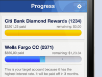ReadyForZero iPhone App Progress Bars